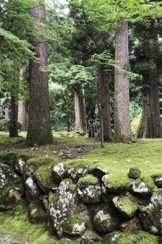 福井県のみどころ3か所!「永平寺」と「朝倉遺跡」そして「インテリアライブラリ」